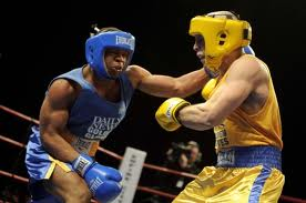 Golden Gloves NYC madison square garden